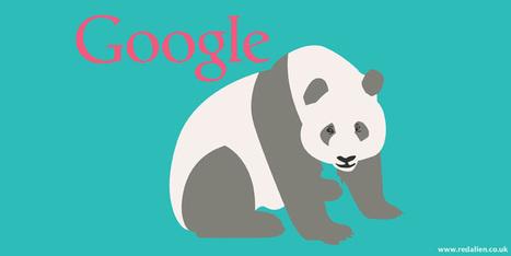 Google Panda keeps on rolling - Algorithm update | SEO And Social Media | Scoop.it
