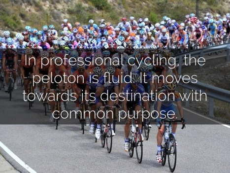 Peloton formations distilled | Thriving or Dying in the Project Age | Scoop.it