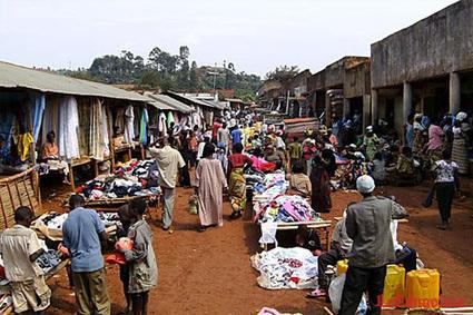 RD Congo – Des agricultrices ont conquis le droit de gérer leurs récoltes | Questions de développement ... | Scoop.it