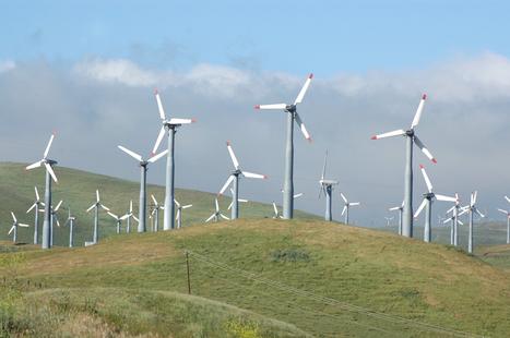 LA GREEN ECONOMY, COS'È?   Per un Mondo Sostenibile   Scoop.it