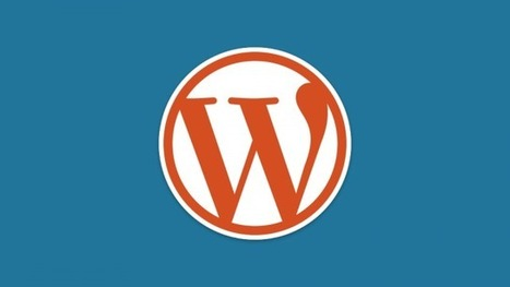 How Not To Optimise Your WordPress Install - Lifehacker Australia | Digital Presence | Scoop.it