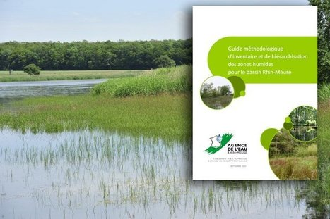 Tout savoir pour la bonne réalisation d'inventaires de zones humides | Agence de l'Eau Rhin-Meuse | Agriculture- Environnement | Scoop.it