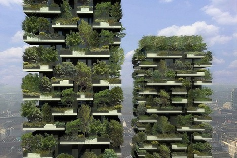 See The Forest That's Growing Within A Concrete Block In Milan | Societal Resilience, Foodproduction, Mobility, Living, Logistics, Infrastructure | Scoop.it