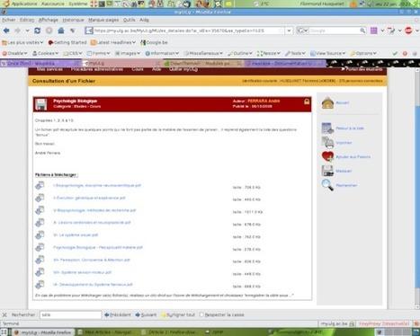 [Firefox] Télécharger plusieurs fichiers en une fois: présentation de DownThemAll (exemple avec MyUlg) | netnavig | Scoop.it