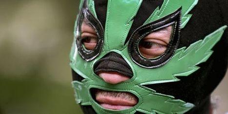 Le Mexique entrouvre la voie à la légalisation de la marijuana | Mexique | Scoop.it
