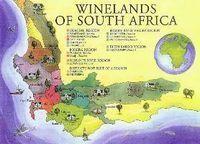 Stella de La Rhune, une fille-Libellule ( digitale ), sur les chemins du Sud-Ouest, raconte ses aventures de gourmande.: Vendredis du Vin # 46 : Syrah, la globe-trotteuse enjôleuse... | Vendredis du Vin | Scoop.it