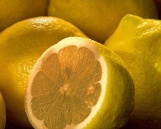 El limon, un citrico salvador   Limón ( Citrus x Limon )   Scoop.it