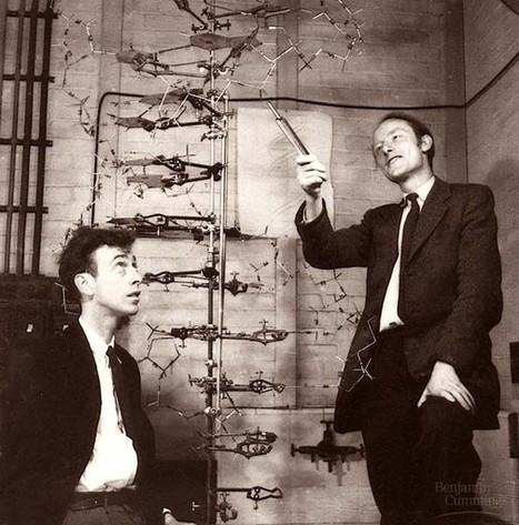 Crick Memorial Meeting live stream   Department of Chemistry   Molecular Biology Demystified   Scoop.it