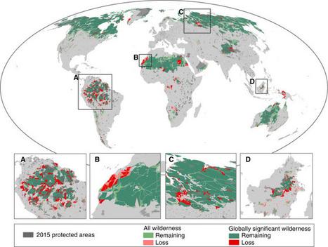 En vingt ans, la Terre a perdu un dixième de ses espaces sauvages | EntomoNews | Scoop.it