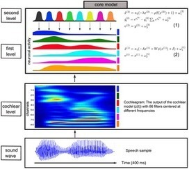 From Birdsong to Human Speech Recognition: Bayesian Inference on a Hierarchy of Nonlinear Dynamical Systems | Science, Technology, and Current Futurism | Scoop.it