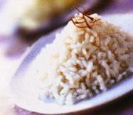 L'Ayurvéda: l'alimentation érigée en médecine - Plantes & santé | Gastronomie et alimentation pour la santé | Scoop.it