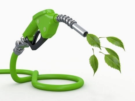 Inconvenient Study: Biofuels not as 'green' as many think – may be worse than Gasoline  | Climate & Clean Air Watch | Scoop.it