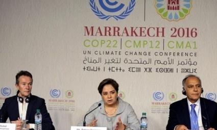 Especial COP 22 de Marrakech: resumen del 1º día | Educación Ambiental y TIC | Scoop.it