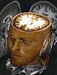 Brain-based Research | Teachinghistory.org | Brain Based Strategies LIS5260 | Scoop.it