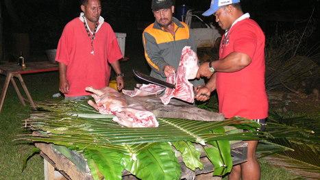 Preparing food for Island Feast | OHS: Puni Tairea | Scoop.it