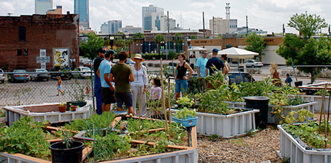 28 Urban Farming Projects That Are Changing the World | Permaculture, Horticulture, Homesteading & Green Technology | Scoop.it