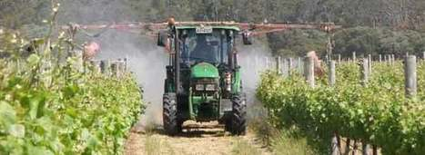 Bordeaux Added to Pesticide Blacklist | Vitabella Wine Daily Gossip | Scoop.it