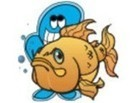(MULTI) - Fish database and translation | instructor-training.com | Glossarissimo! | Scoop.it
