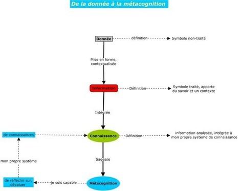 Livres : Managez avec le Concept Mapping, de Pierre Mongin ! | Cartes mentales | Scoop.it
