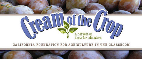 CFAITC: Cream of the Crop | Gardening with Children to Healthy Nutrition | Scoop.it