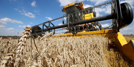 En cartes: pourquoi la récolte de céréales sera la pire depuis trente ans | Ca m'interpelle... | Scoop.it