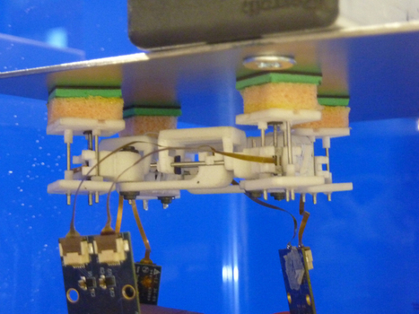 A frog-like robot that crawls inside your abdomen | KurzweilAI | Longevity science | Scoop.it