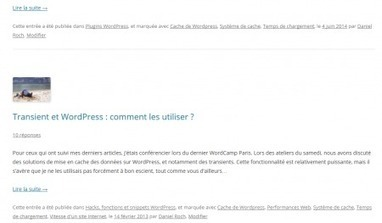 Les mots clés de WordPress et le référencement : le guide | Social medias marketing | Scoop.it