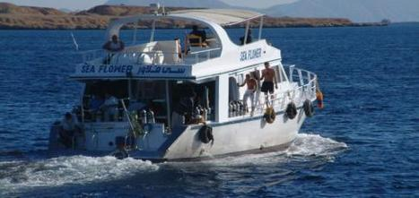 News: Dive Boat Etiquette Guide - Dive Report | All about water, the oceans, environmental issues | Scoop.it