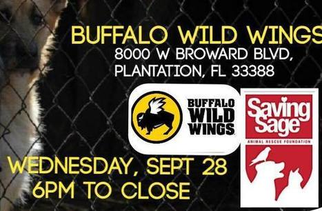 Buffalo Wild Wings Supports Animal Rescue | Business News & Finance | Scoop.it