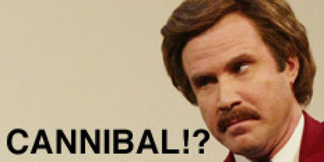11 Things You Didn't Know About Anchorman   DAAAMN!   Scoop.it