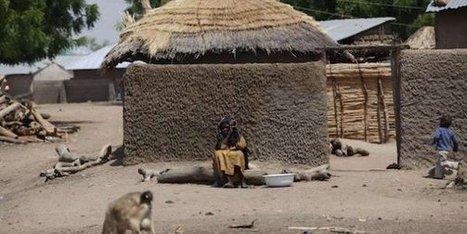 En chiffres : les enfants victimes de Boko Haram dans la région du Lac Tchad - JeuneAfrique.com | Voix Africaine: Afrique Infos | Scoop.it