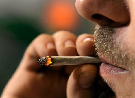Skitsofrenia ja kannabiksen käyttö voivat johtua samoista geeneistä | Kannabis | Scoop.it