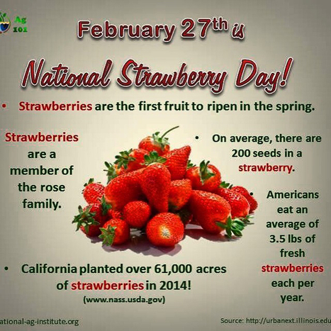 National Strawberry Day! | Cottage Gardening | Scoop.it