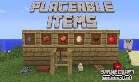 Placeable Items Mod 1.8.6 | World Game | Scoop.it