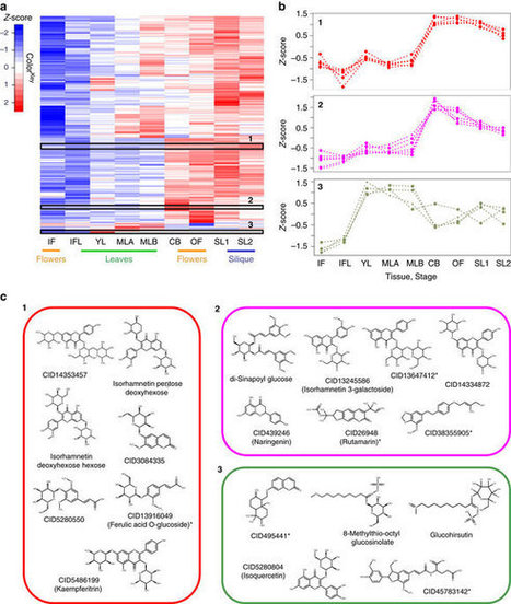 The WEIZMASS spectral library for high-confidence metabolite identification | Microbiome and plant immunity | Scoop.it