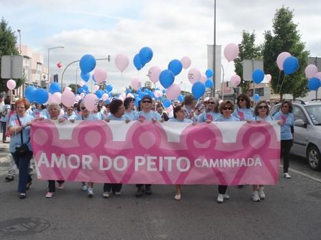 Amor do Peito junta 500 em caminhada solidária - Cidade de ...   Xira News   Scoop.it
