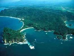 Manuel Antonio:  National Parks of Costa Rica   Potpourri   Scoop.it