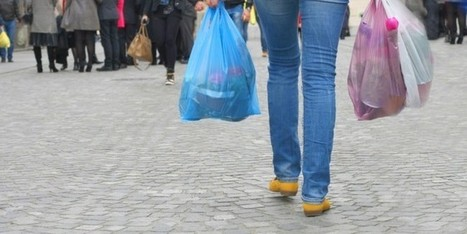 Small Business Opinions Divided on Plastic Bag Fees | Digital-News on Scoop.it today | Scoop.it