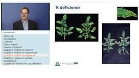 Plant Nutrition Webinars -   Agronomic articles   Scoop.it