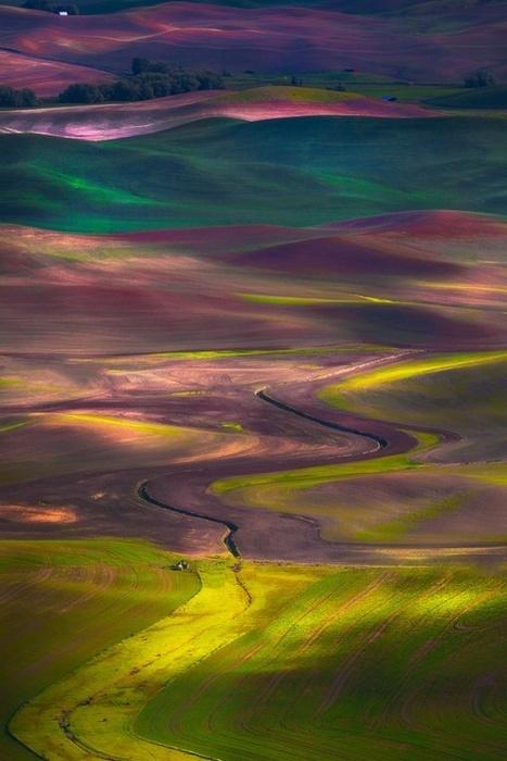 Amazing nature photos   Life @ Work   Scoop.it