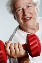 » Weight Training Helps Prevent Dementia   - Psych Central News | Mom Psych | Scoop.it