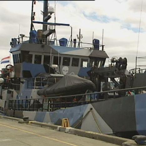 Anti-whalers prepare to head south - ABC Online | Sea Sheperd | Scoop.it