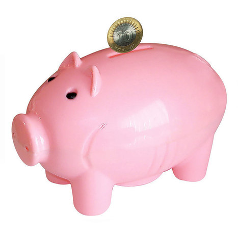 Buddyz  PigShaped Coin Bank   Online Shopping in India   Scoop.it