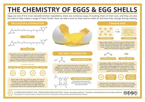 The Chemistry of Eggs & Egg Shells | COMPUTATIONAL THINKING and CYBERLEARNING | Scoop.it