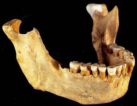 No era el último neandertal | Noticias 2º Trimestre CMC | Scoop.it