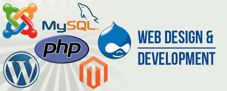 Web Design & Development Training in Chandigarh | Brill Infosystems | Scoop.it
