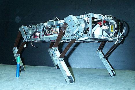 Running robots   Making and programming robots AlexB 8   Scoop.it