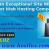 Web Site & Domain Services