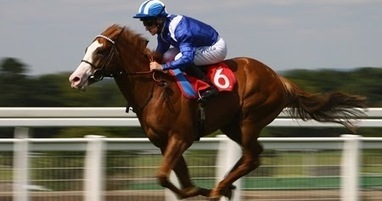 Get an Amazing Experience of Malaysia Horse Racing Betting Online | Online Sports Betting Account in Indonesia | Scoop.it