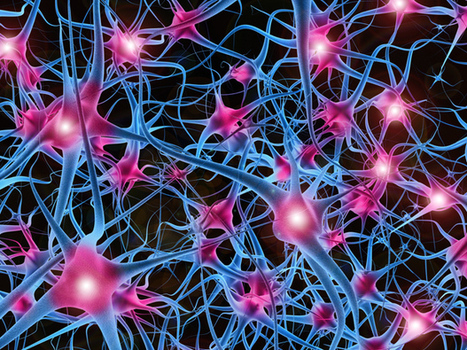 Biggest Neural Network Ever Pushes AI Deep Learning | Social Foraging | Scoop.it